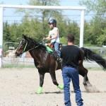 clinique-equitation-western
